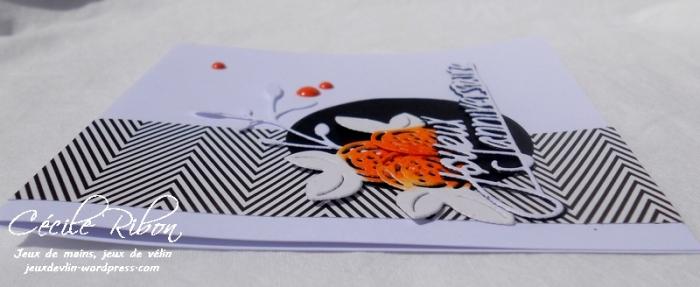 carte Fusion22 - DSCN2098