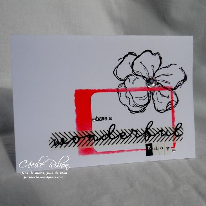 Carte CTS239 - DSCN2691