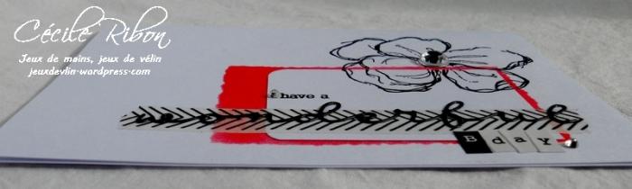 Carte CTS329 - DSCN2696