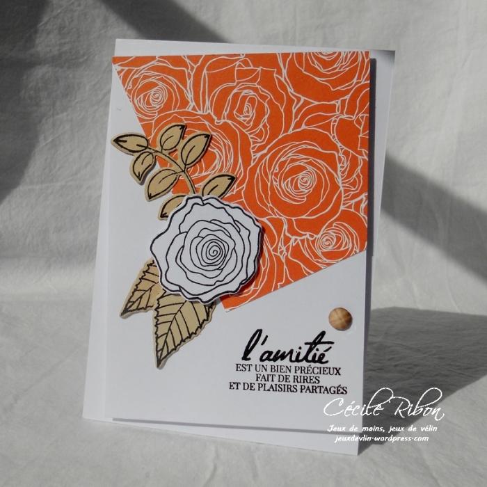 Carte CTD463 - DSCN3102