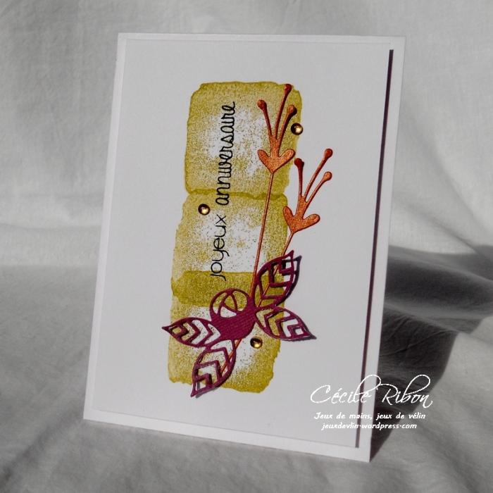 Carte CTD466 - DSCN3444
