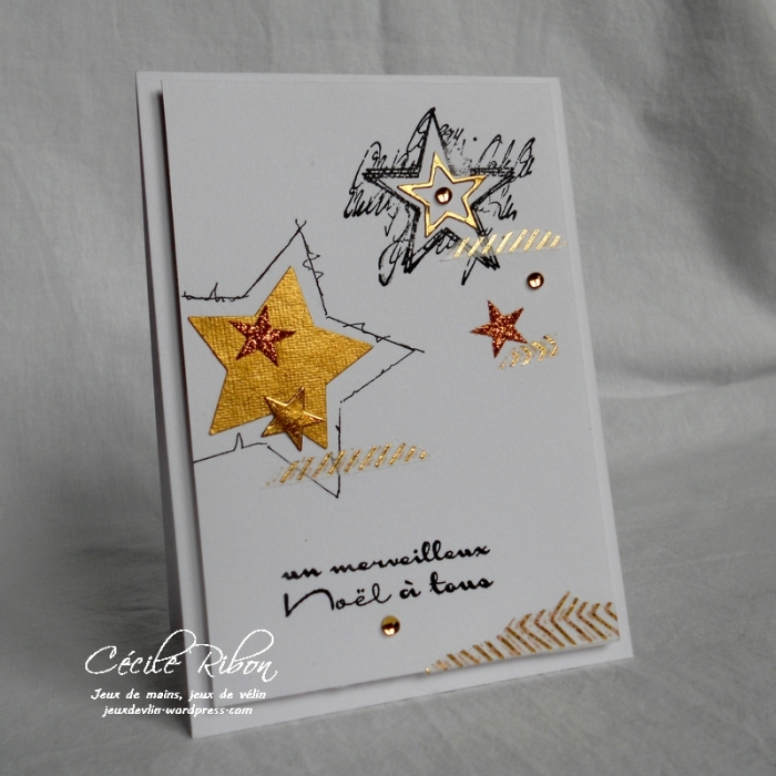 Carte CTS245 - DSCN3504