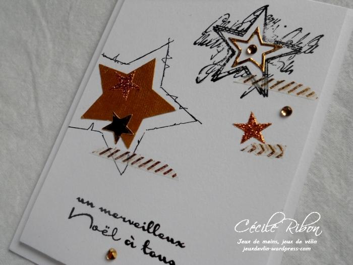 Carte CTS245 - DSCN3510