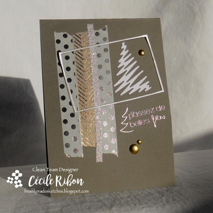 Carte FMS310 - DSCN3362