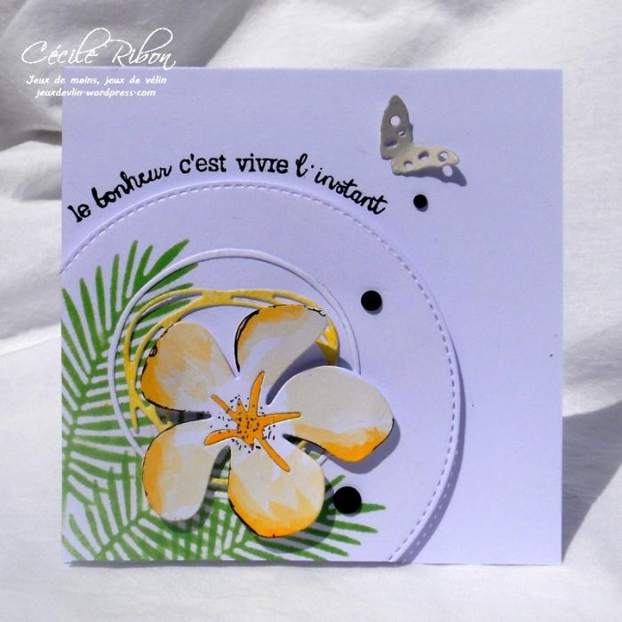 Carte LittleScrap37 - DSCN2047