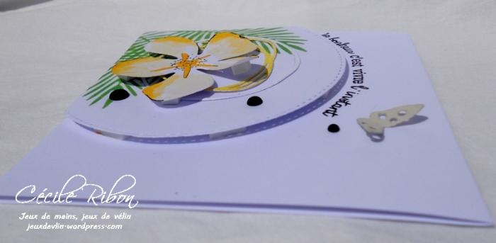 Carte LittleScrap37 - DSCN2050