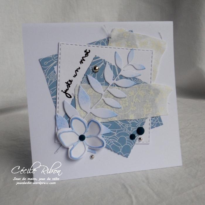 Carte Maniak163 - DSCN3113