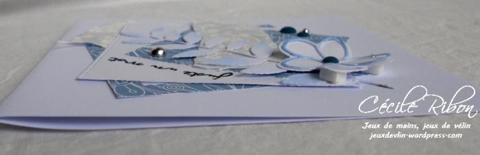 Carte Maniak163 - DSCN3118
