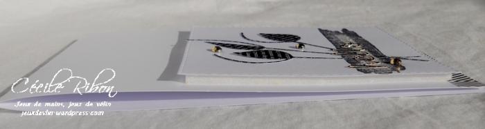 Carte PCC505 - DSCN3275