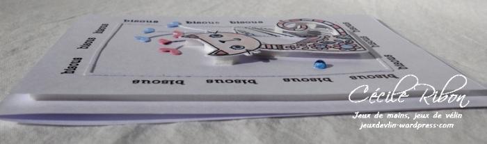 Carte AID21 - DSCN3461