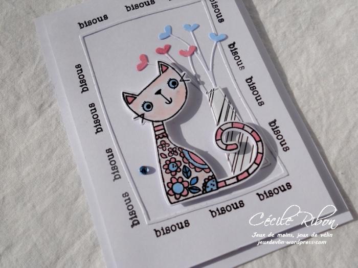 Carte AID21 - DSCN3465