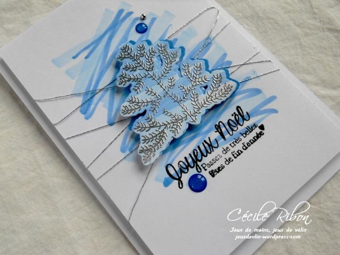 Carte CTD469 - DSCN3898