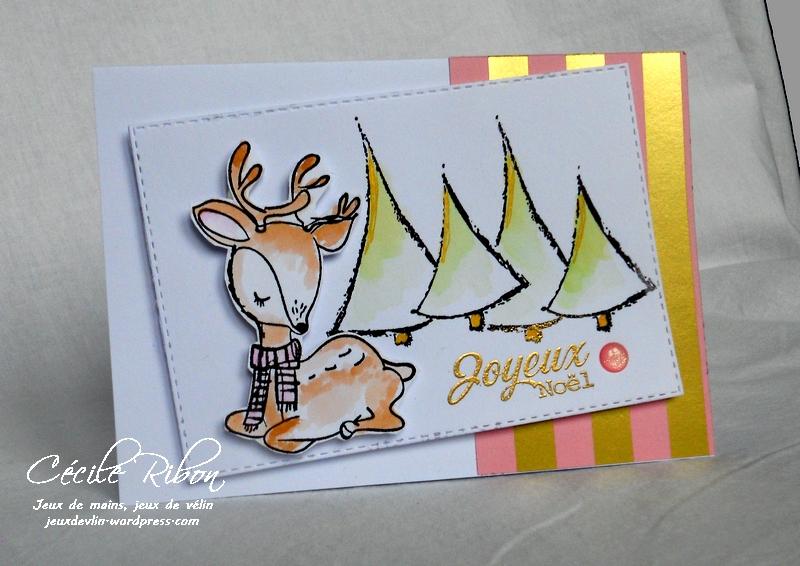 Carte Amandine - DSCN4590