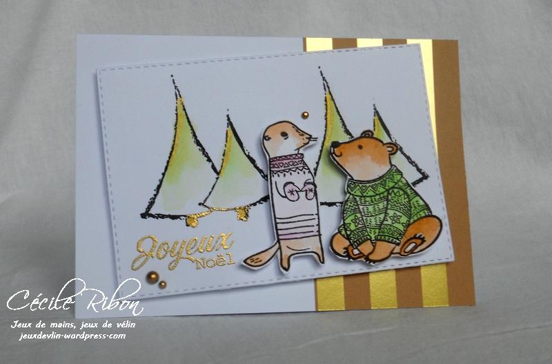 Carte F&C - DSCN4584
