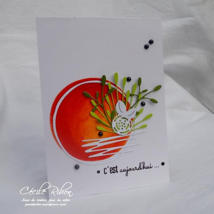 Carte LittleScrap52 - DSCN2422