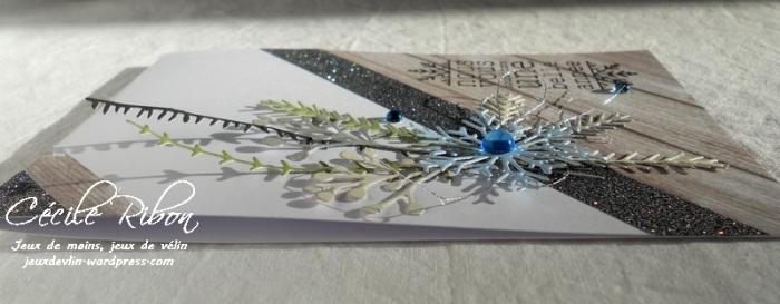 Carte AID25 - DSCN4689