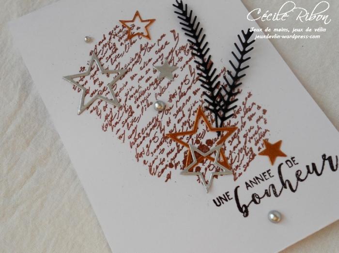 Carte Gwen - DSCN4889
