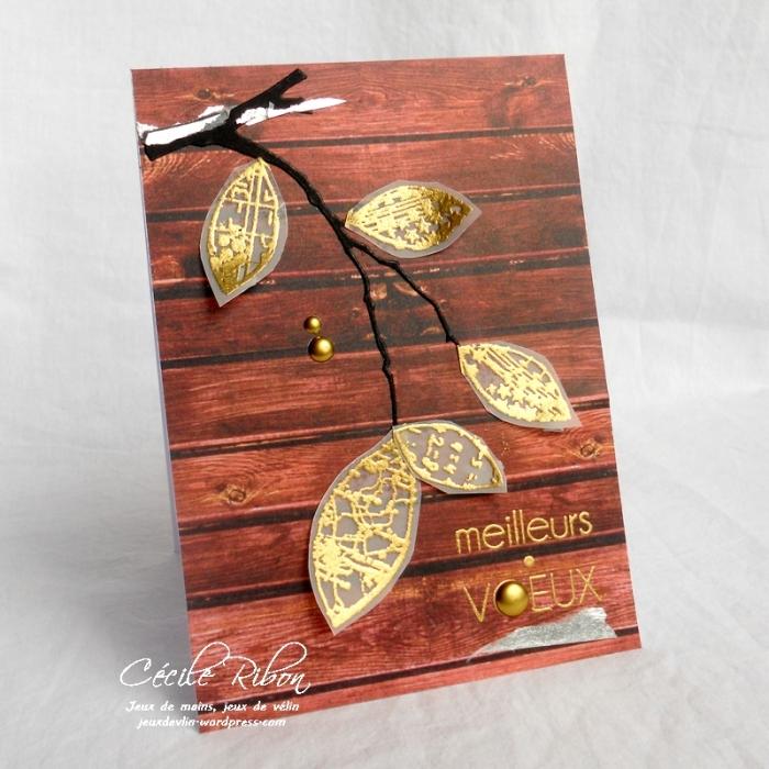 Carte LittleScrap60 - DSCN3560