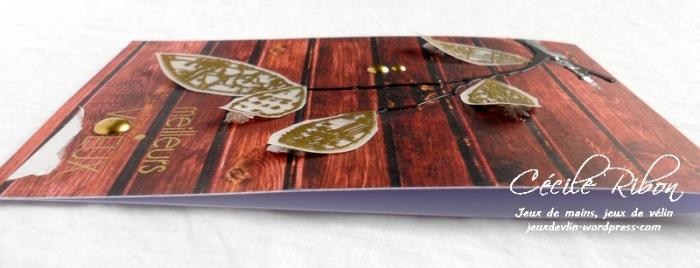 Carte LittleScrap60 - DSCN3569