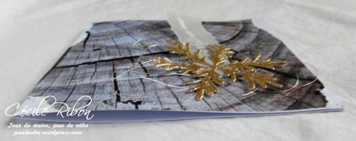 Carte LittleScrap69 - DSCN4959