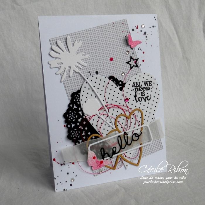 Carte AID27 - DSCN4985