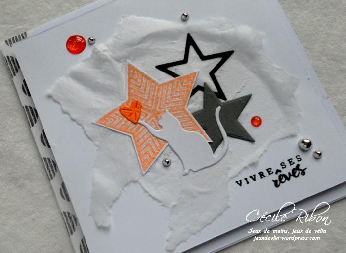 Carte Creablabla339 - DSCN5062