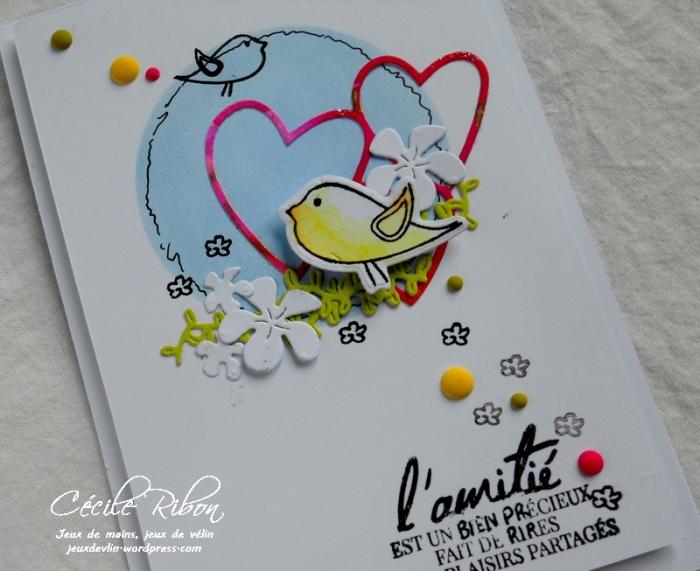 Carte CTD478 - DSCN5071