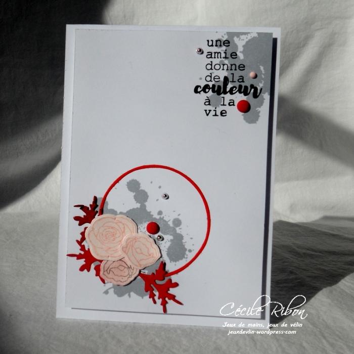 Carte CTD479 - DSCN5144