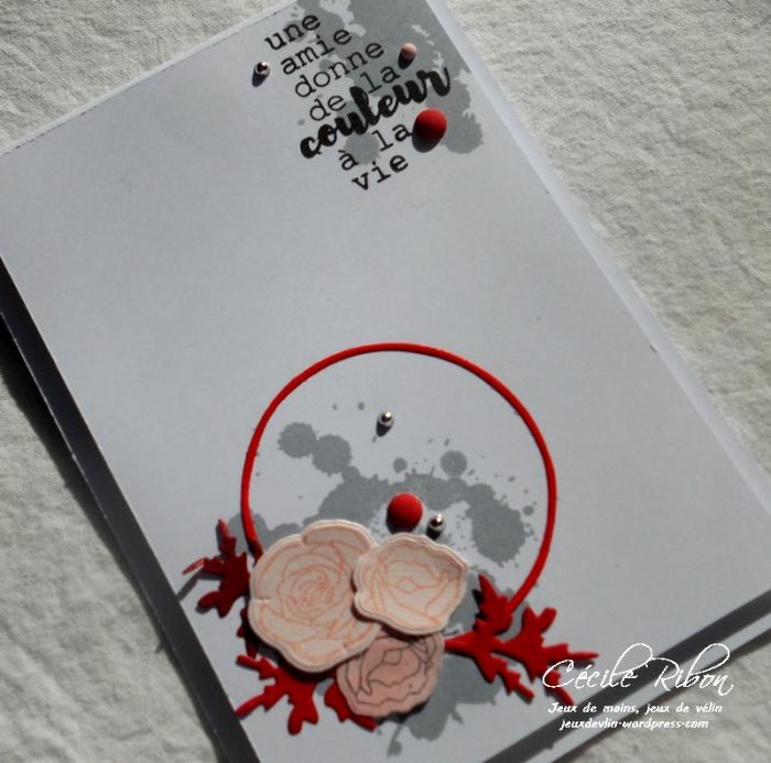 Carte CTD479 - DSCN5152