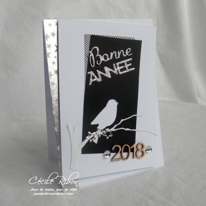 Carte Emmanuelle - DSCN5040