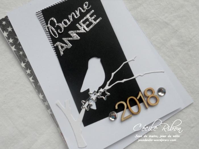 Carte Emmanuelle - DSCN5044
