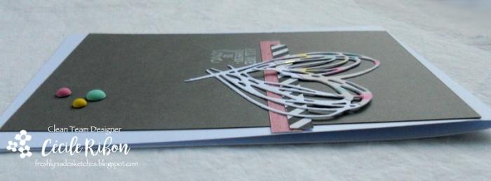 Carte FMS324 - DSCN5195