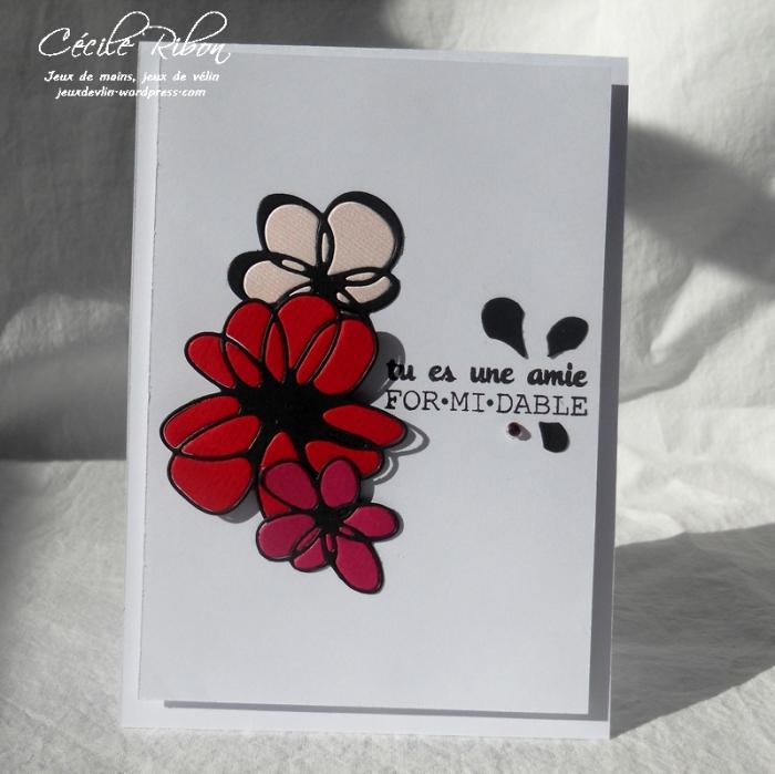 Carte FUSION29 - DSCN5129