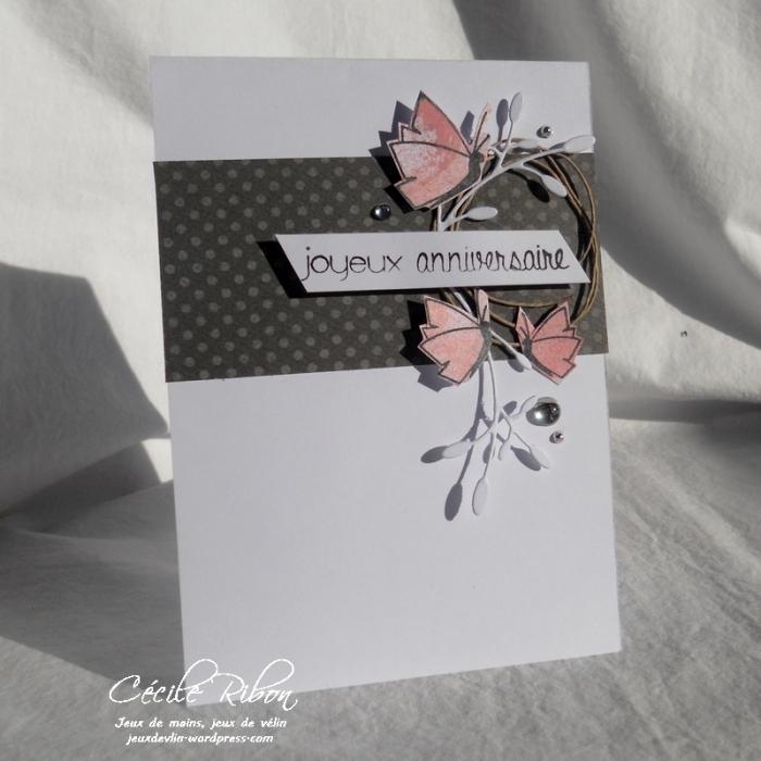 Carte FUSION30 - DSCN5434