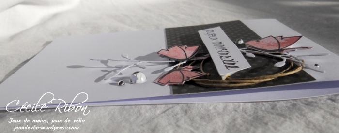 Carte FUSION30 - DSCN5437