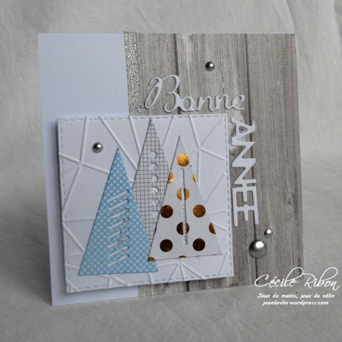 Carte Karilou - DSCN5000