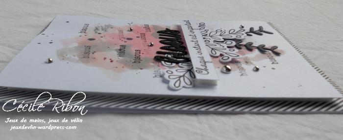 Carte AID30 - DSCN5590