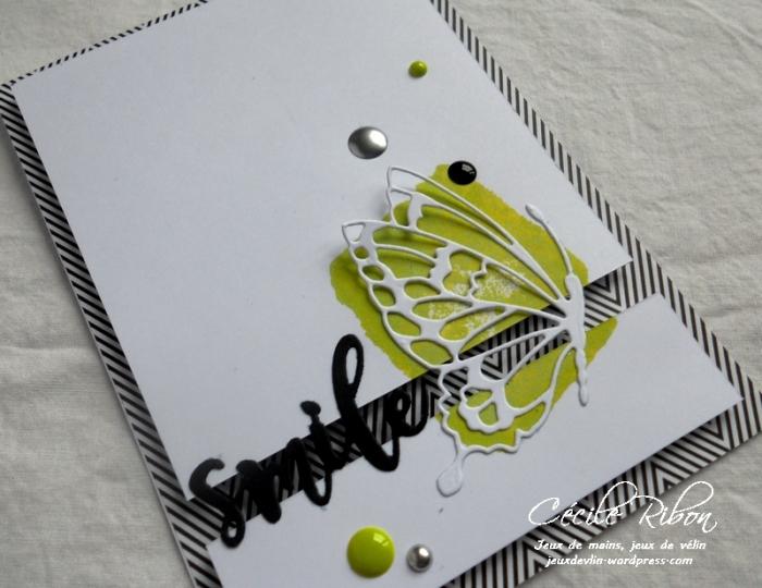 Carte CTS261 - DSCN5583