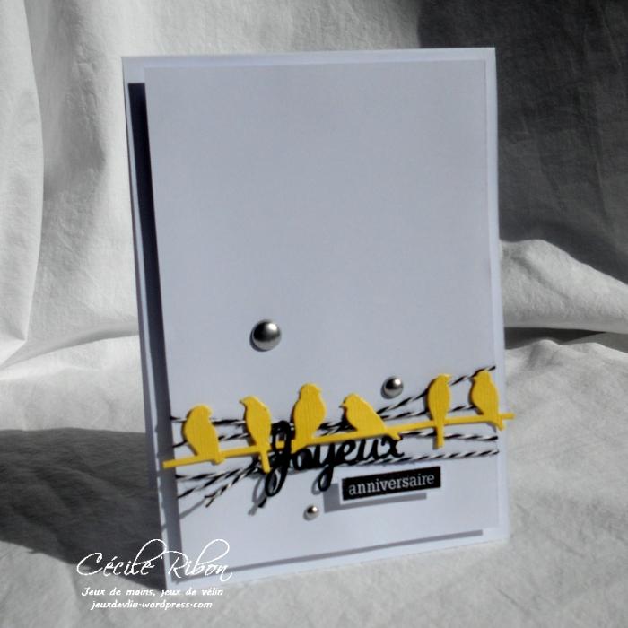 Carte CTS262 - DSCN5701