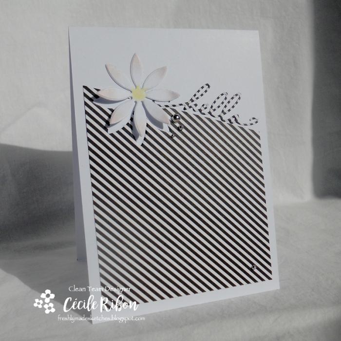 Carte FMS327 - DSCN5537