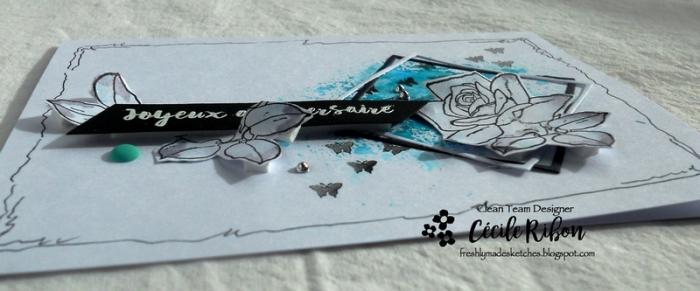 Carte FMS328 - DSCN5671