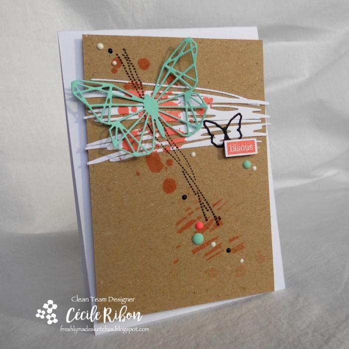 Carte FMS330 - DSCN5854