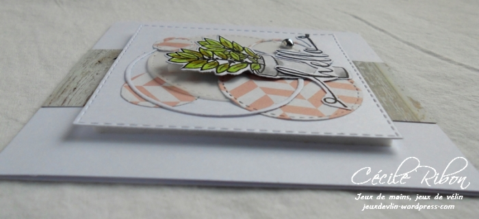Carte AID31 - DSCN5784