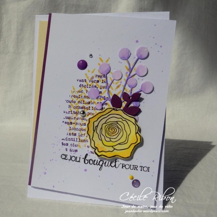 Carte AID32 - DSCN6053