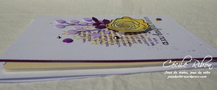 Carte AID32 - DSCN6058