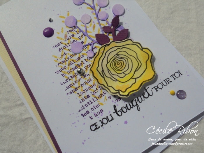 Carte AID32 - DSCN6060