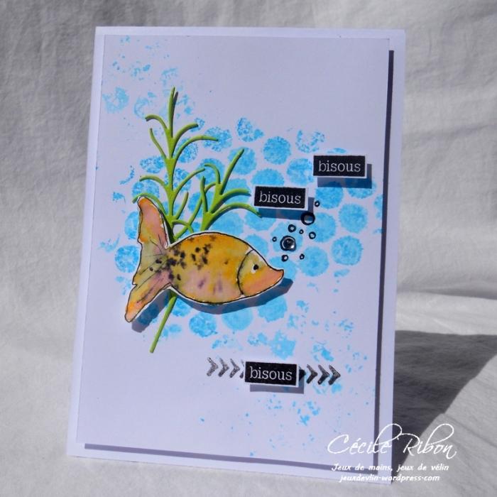 Carte Maniak175 - DSCN6017