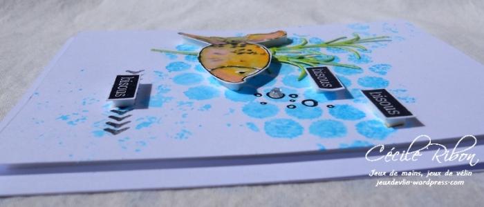 carte Maniak175 - DSCN6019