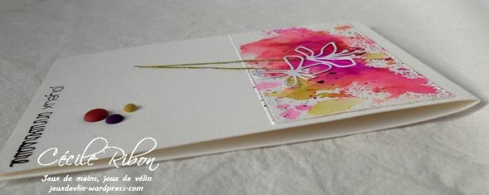 Carte Vicky - DSCN3944
