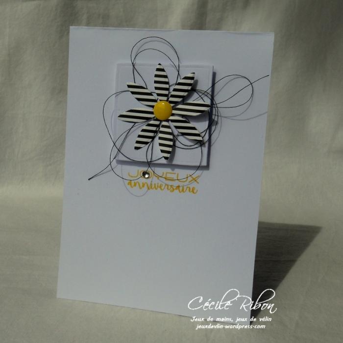 Carte AID33 - DSCN6083